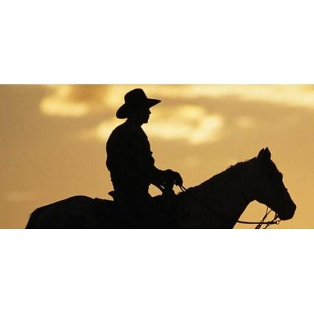 Cowboy (red box) 10ml - e-líquido alemán - Valeo